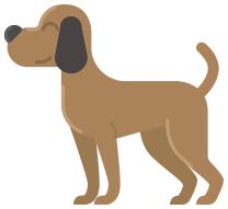 щенок, задача на закономерность